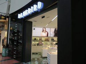 projeto loja bluebird 1